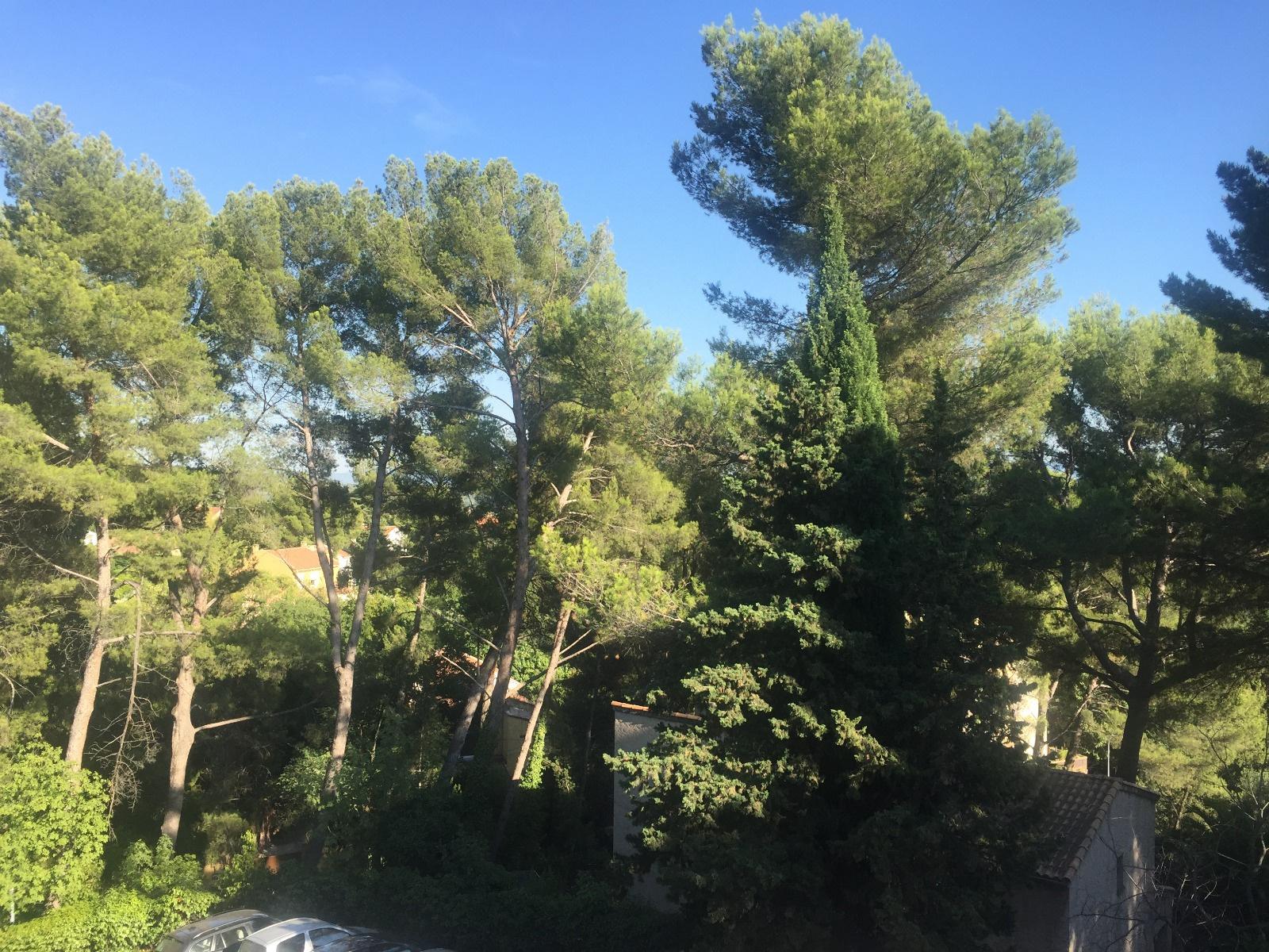 Offres de vente Appartement Aix-en-Provence (13100)